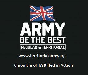 territorialarmy_org